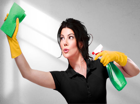 ecoserve professional cleaners